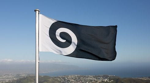 koru-flying-on-top-of-a-hill_r4898_res.jpg